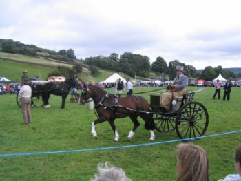 At the Reeth Agricultural Show