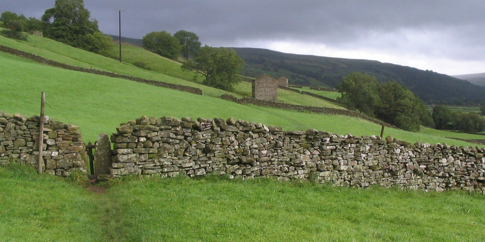 On the way to Reeth. Path goes straight across fields by barns 8/26/2008